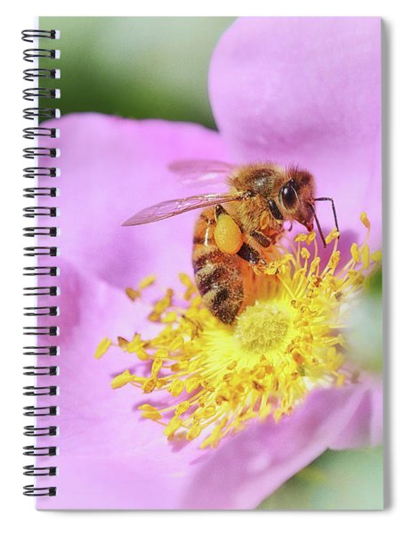 Sweet As Honey Spiral Notebook