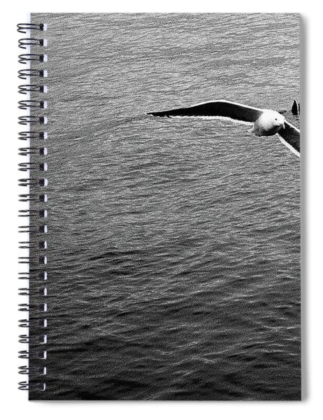 Swooping In Spiral Notebook
