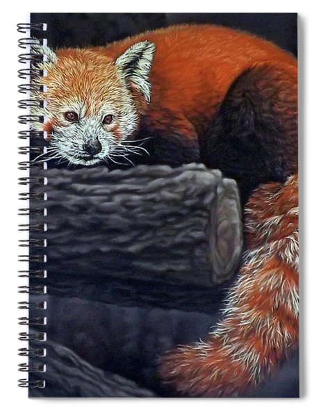 Takeo, The Red Panda Spiral Notebook