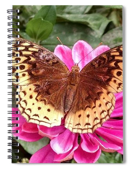 Taking A Moment To Rest Spiral Notebook