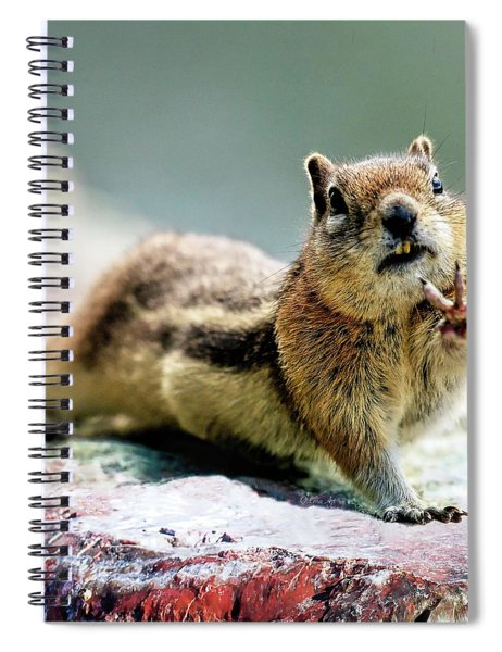 Talk To The Hand By Olena Art Spiral Notebook