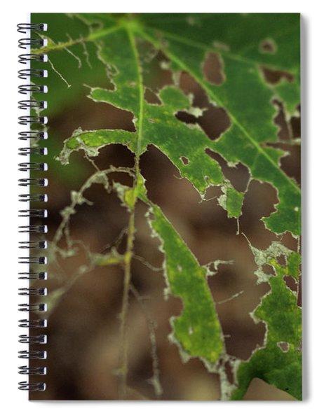 Tasty Tree Spiral Notebook