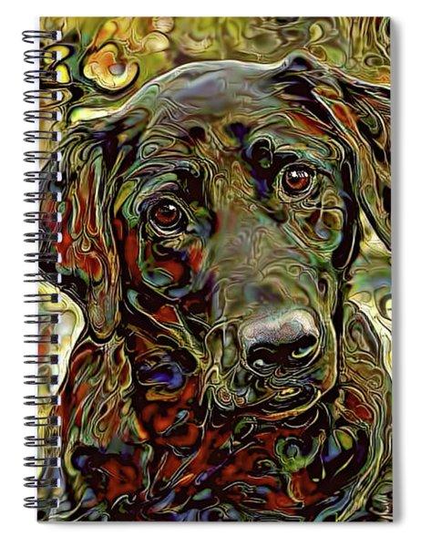 That Look Spiral Notebook