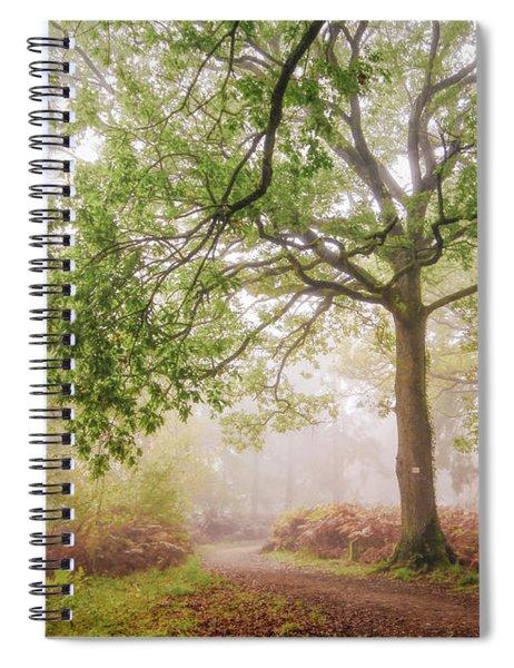 The Autumn Path Spiral Notebook