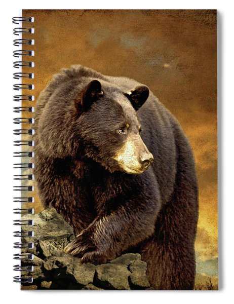 The Bear Went Over The Mountain Spiral Notebook