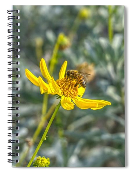 The Bee The Flower Spiral Notebook