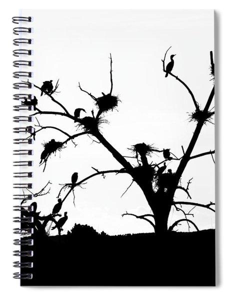 The Birds Spiral Notebook