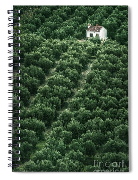 The Color Of Solitude Spiral Notebook