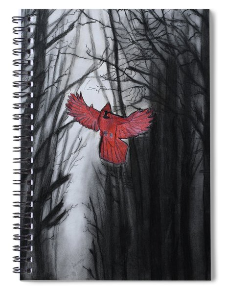 The Dark Forest Spiral Notebook