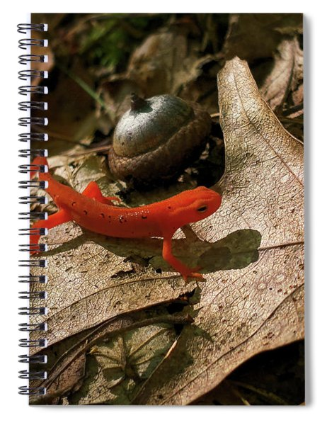 The Efts Progress Spiral Notebook