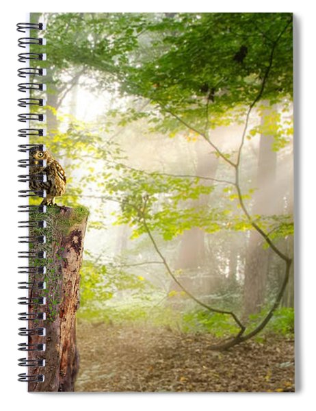 The Enchanted Forrest Spiral Notebook