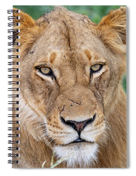 The Face Of Experience Spiral Notebook