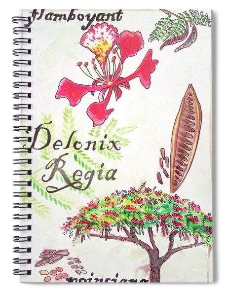 The Flamboyant Tree Spiral Notebook