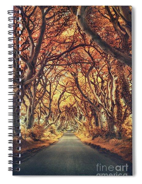 The Golden Path Spiral Notebook