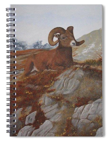 The High Throne Spiral Notebook