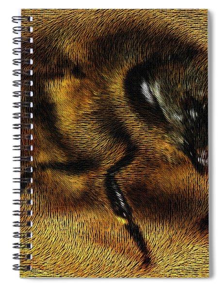 The Killer Bee Spiral Notebook