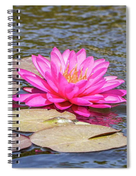 Spiral Notebook featuring the photograph The Lady Is Pink 03 by Arik Baltinester