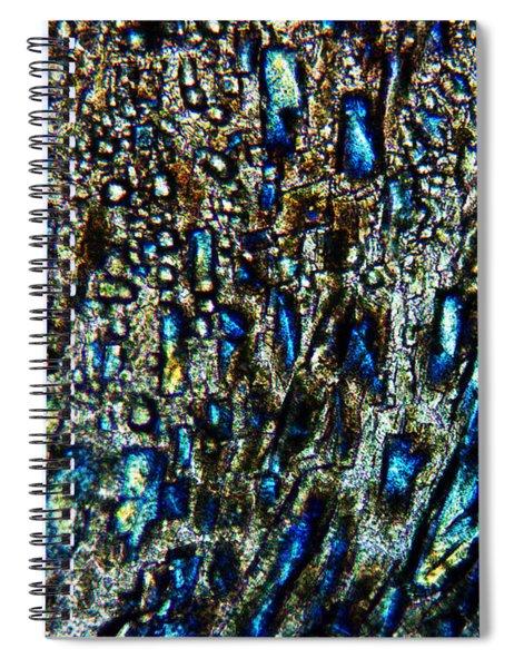 The Leveler Spiral Notebook