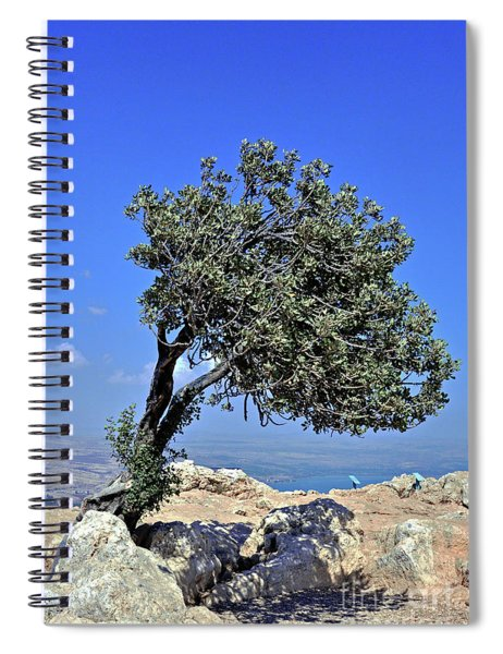 The Lone Carob Tree Spiral Notebook