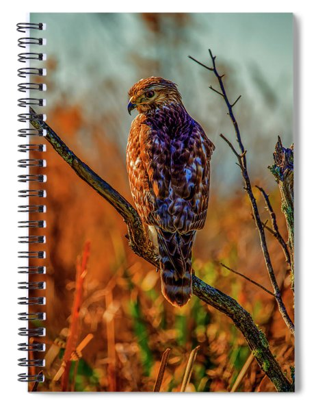 The Look Spiral Notebook