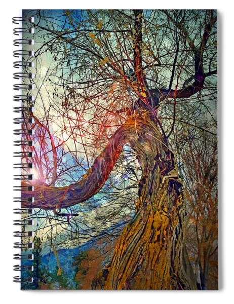 The Offering Spiral Notebook