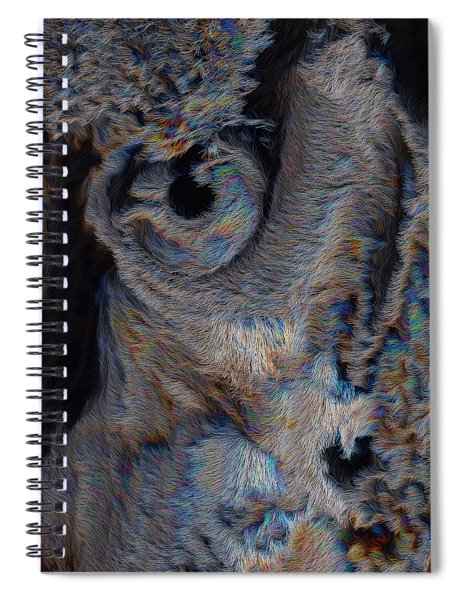 The Old Owl That Watches Spiral Notebook