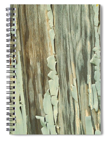 The Peeling Wall Spiral Notebook