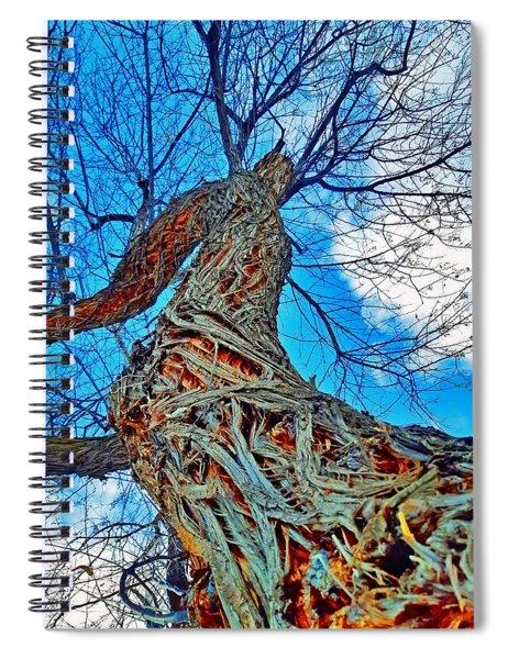 The Queen Of Pine Park Spiral Notebook
