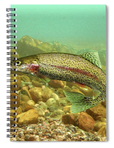The Rainbow Trout Spiral Notebook