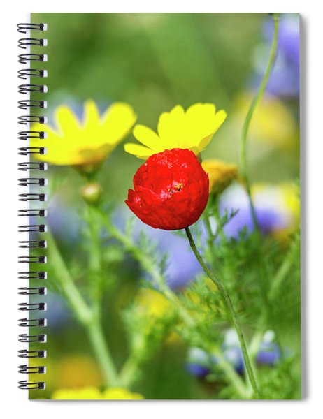 Spiral Notebook featuring the photograph The Red Spot 02 by Arik Baltinester