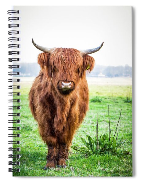 Spiral Notebook featuring the photograph The Scottish Highlander by Anjo Ten Kate