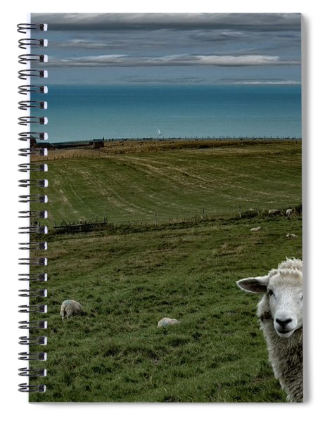 The Sheep On The Clifftop Spiral Notebook