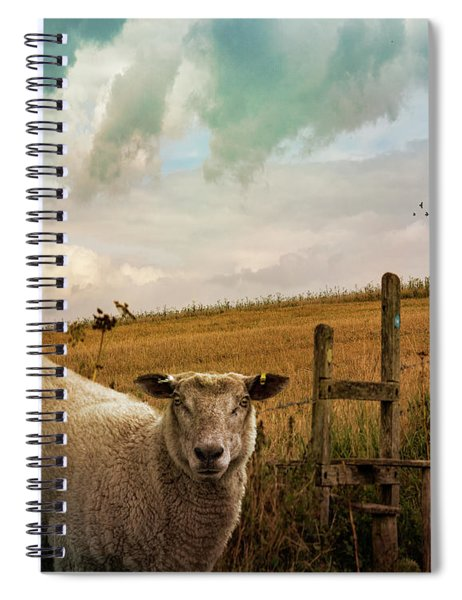 The Sheep Who Knows Where She's Going Spiral Notebook