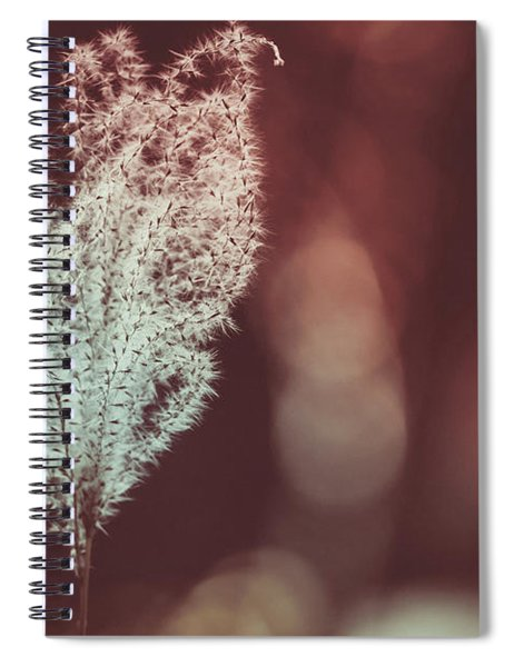 The Shine Spiral Notebook