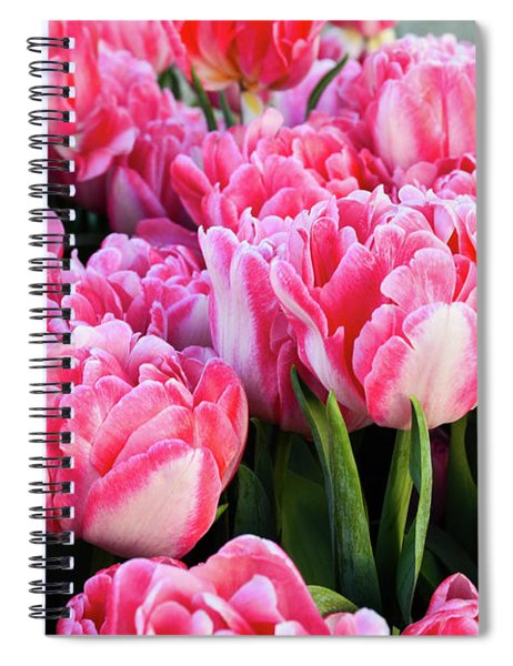 The Sweet Hello Spiral Notebook