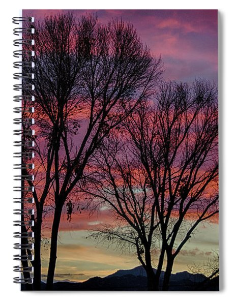 The Trees Know Sunset Spiral Notebook