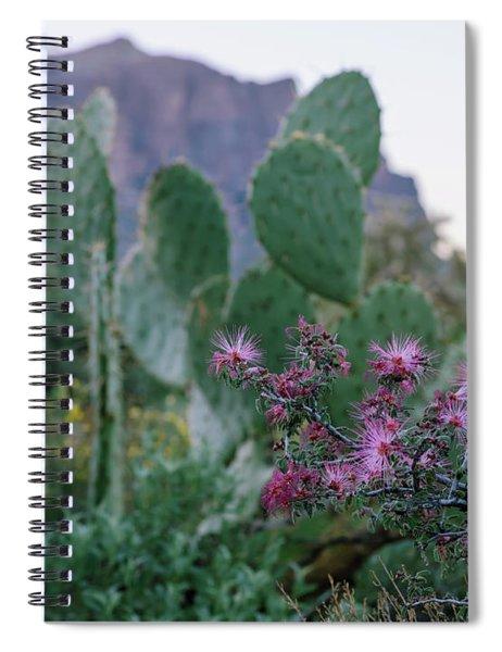 The Vibrant Desert Spiral Notebook