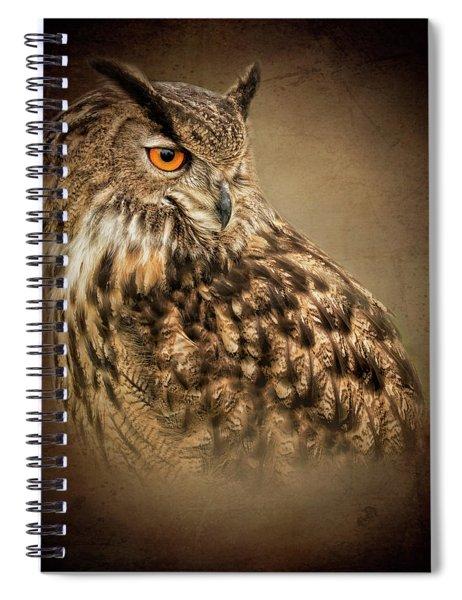 The Watchful Eye Spiral Notebook