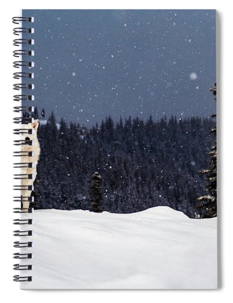The Wolf Spiral Notebook
