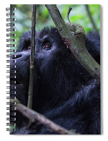 The Wonder Spiral Notebook