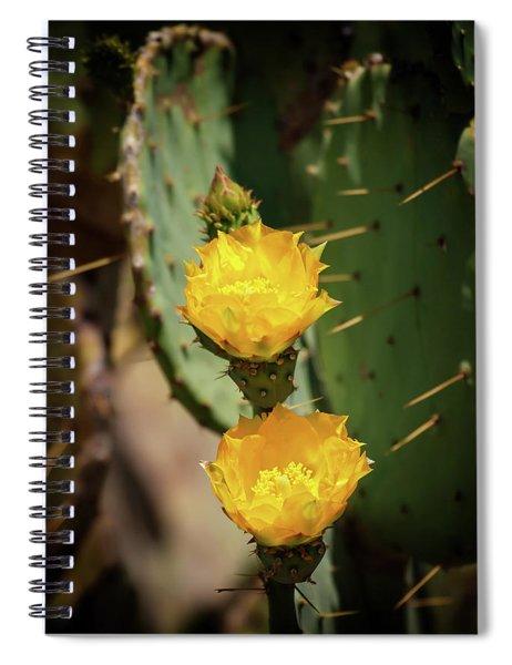 The Yellow Rose Of Arizona Spiral Notebook by Rick Furmanek