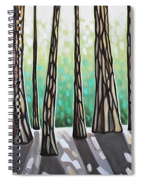 Look Beyond The Shadows Spiral Notebook