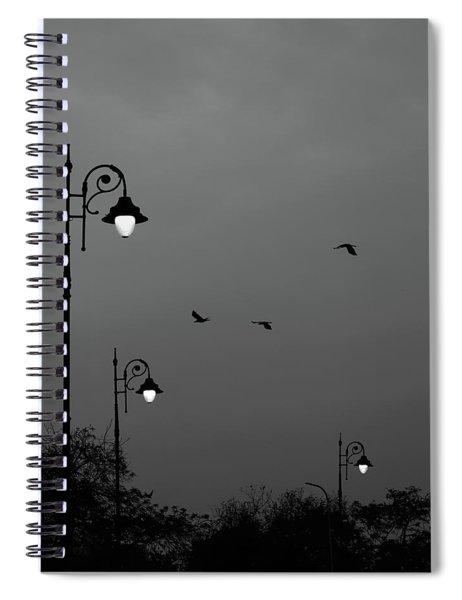 Three Lamps Three Birds Spiral Notebook