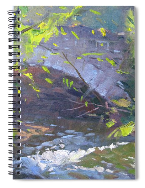 Three Sisters Islands Spiral Notebook
