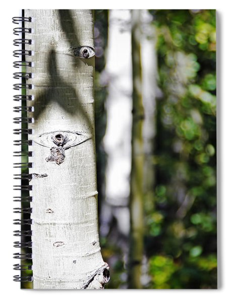 Through The Aspen Forest Spiral Notebook