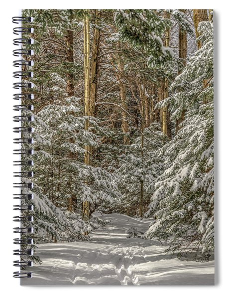 Spiral Notebook featuring the photograph Thru The Forest by Rod Best