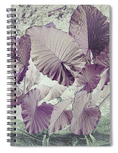 Borneo Giant Abstract Spiral Notebook