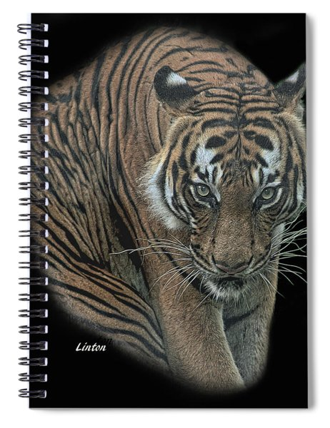 Tiger 6 Spiral Notebook