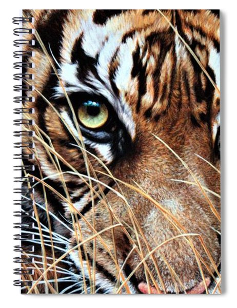 Spiral Notebook featuring the painting Tiger Eyes By Alan M Hunt by Alan M Hunt