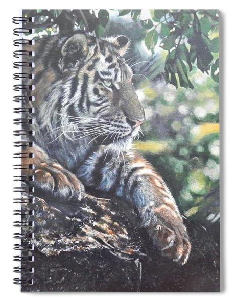 Tiger In Dappled Light Spiral Notebook